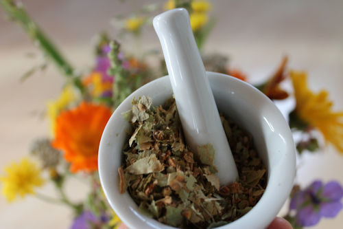 mortar and pestle used to grind plant material